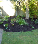 garden maintenance - dan morgan garden landscaping and maintenance